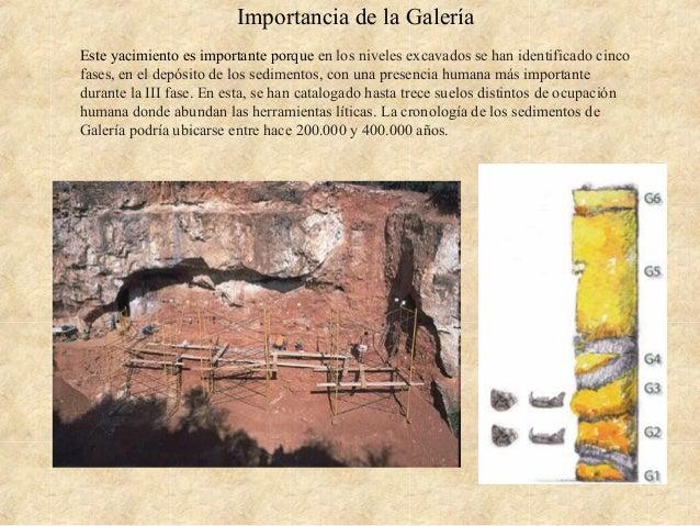 Importancia de la Galería Este yacimiento es importante porque en los niveles excavados se han identificado cinco fases, e...