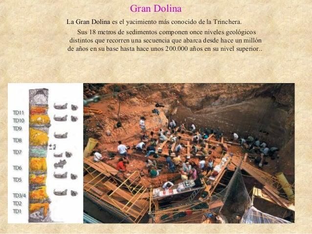 Gran Dolina La Gran Dolina es el yacimiento más conocido de la Trinchera. Sus 18 metros de sedimentos componen once nivele...