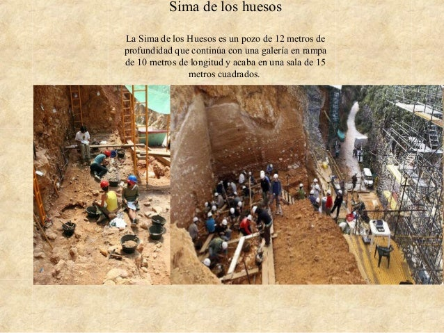 Sima de los huesos La Sima de los Huesos es un pozo de 12 metros de profundidad que continúa con una galería en rampa de 1...