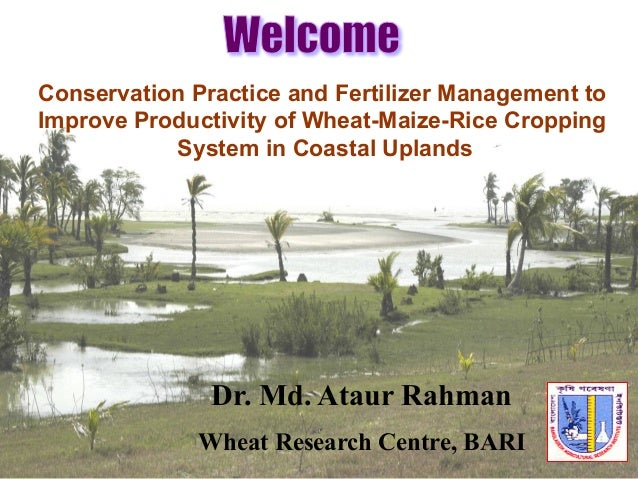 Conservation Practice and Fertilizer Management to Improve Productivity of Wheat-Maize-Rice Cropping System in Coastal Upl...