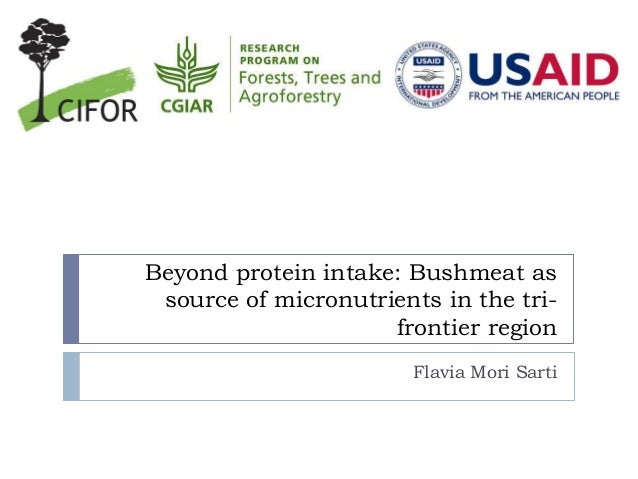 Beyond protein intake: Bushmeat as source of micronutrients in the tri- frontier region Flavia Mori Sarti