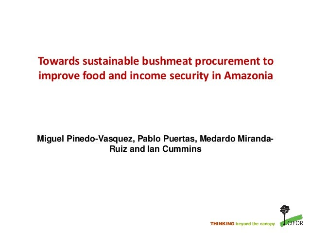 THINKING beyond the canopy Towards sustainable bushmeat procurement to improve food and income security in Amazonia Miguel...