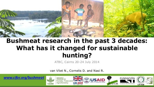 Bushmeat research in the past 3 decades: What has it changed for sustainable hunting?