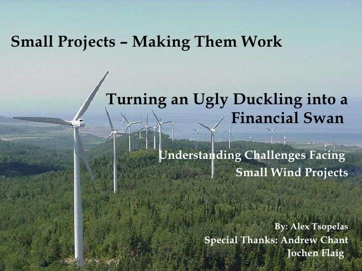 Small Projects – Making Them Work <ul><li>Turning an Ugly Duckling into a Financial Swan  </li></ul><ul><li>Understanding ...