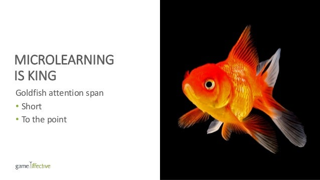 MICROLEARNING IS KING Goldfish attention span • Short • To the point