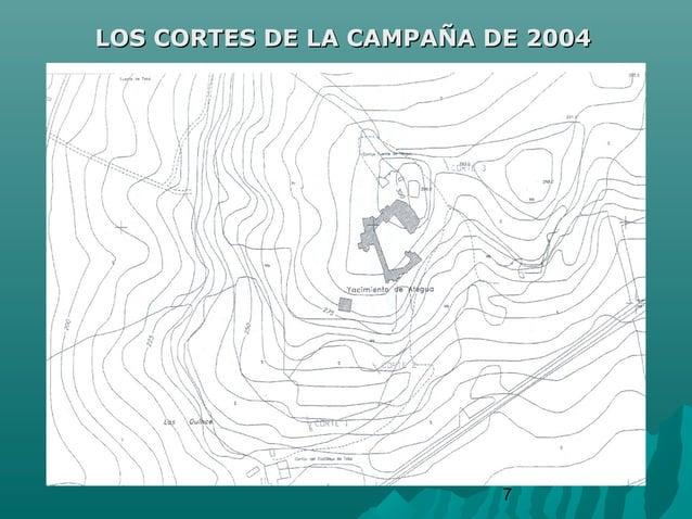 7LOS CORTES DE LA CAMPAÑA DE 2004LOS CORTES DE LA CAMPAÑA DE 2004