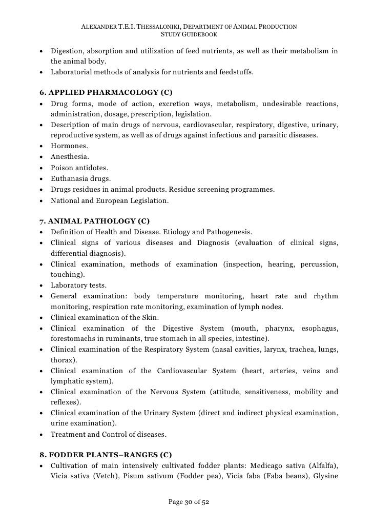urinary system essay