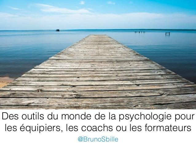 Des outils du monde de la psychologie pour les équipiers, les coachs ou les formateurs @BrunoSbille