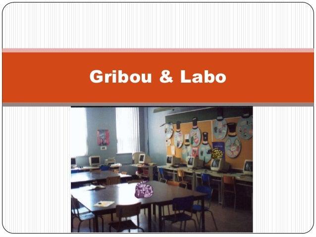 Gribou & Labo