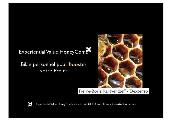 Experiential Value HoneyCombBilan personnel pour booster         votre Projet                                      Pierre-...