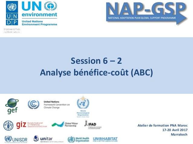 Atelier de formation PNA Maroc 17-20 Avril 2017 Marrakech Session 6 – 2 Analyse bénéfice-coût (ABC)