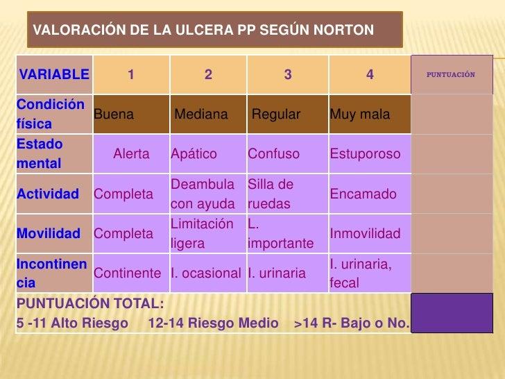 VALORACIÓN DE LA ULCERA PP SEGÚN NORTON<br />