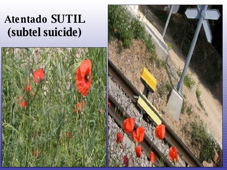 Atentado   SUTIL (subtel suicide)