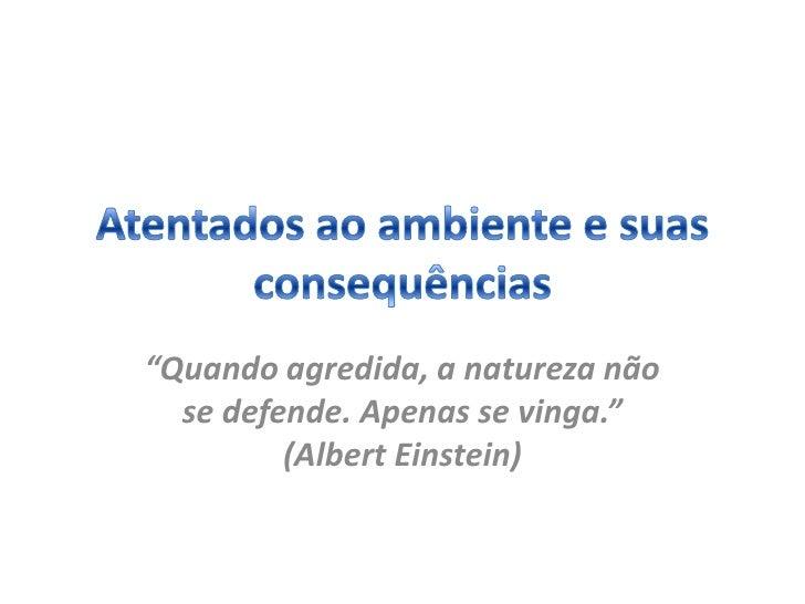 """""""Quando agredida, a natureza não  se defende. Apenas se vinga.""""         (Albert Einstein)"""