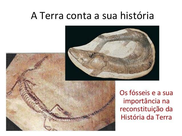 A Terra conta a sua história                    Os fósseis e a sua                     importância na                    r...