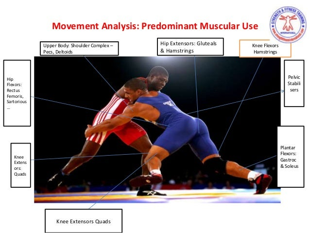 most important muscles for wrestling