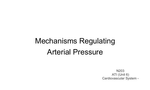 Mechanisms Regulating  Arterial Pressure  N203  ATI (Unit 6)  Cardiovascular System -