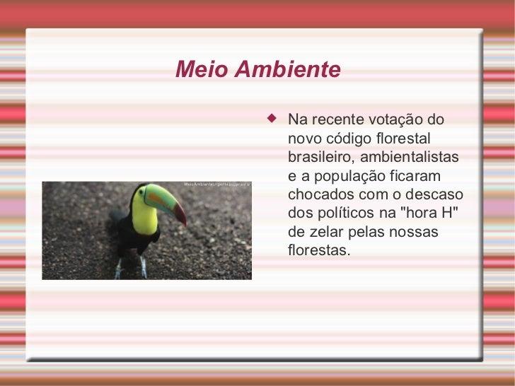 Meio Ambiente <ul><li>Na recente votação do novo código florestal brasileiro, ambientalistas e a população ficaram chocado...