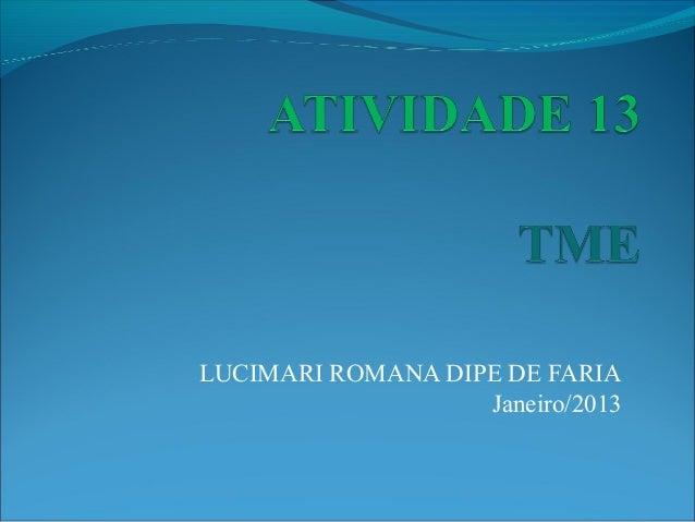 LUCIMARI ROMANA DIPE DE FARIA                   Janeiro/2013