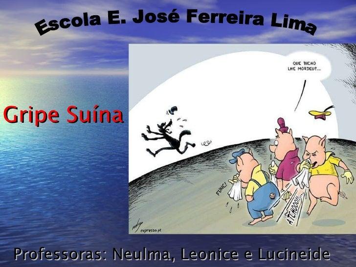 Professoras: Neulma, Leonice e Lucineide Gripe Suína Escola E. José Ferreira Lima
