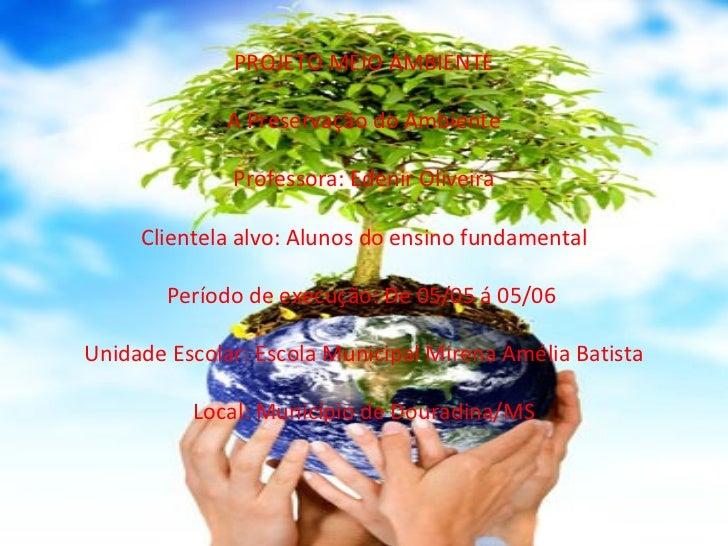 PROJETO MEIO AMBIENTE  A Preservação do Ambiente  Professora: Edenir Oliveira  Clientela alvo: Alunos do ensino fundame...