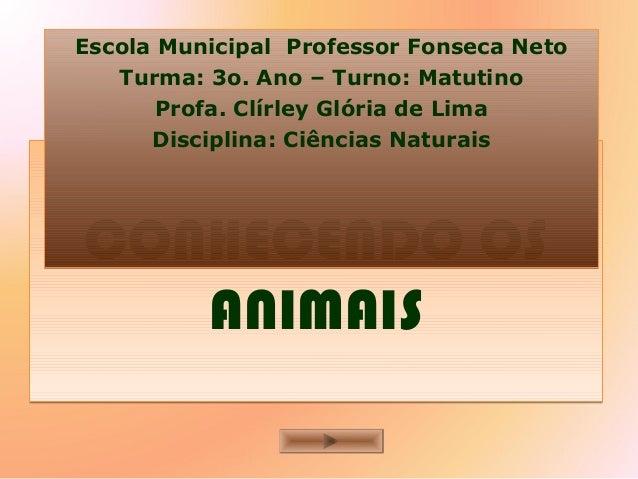 CONHECENDO OS ANIMAIS CONHECENDO OS ANIMAIS Escola Municipal Professor Fonseca Neto Turma: 3o. Ano – Turno: Matutino Profa...