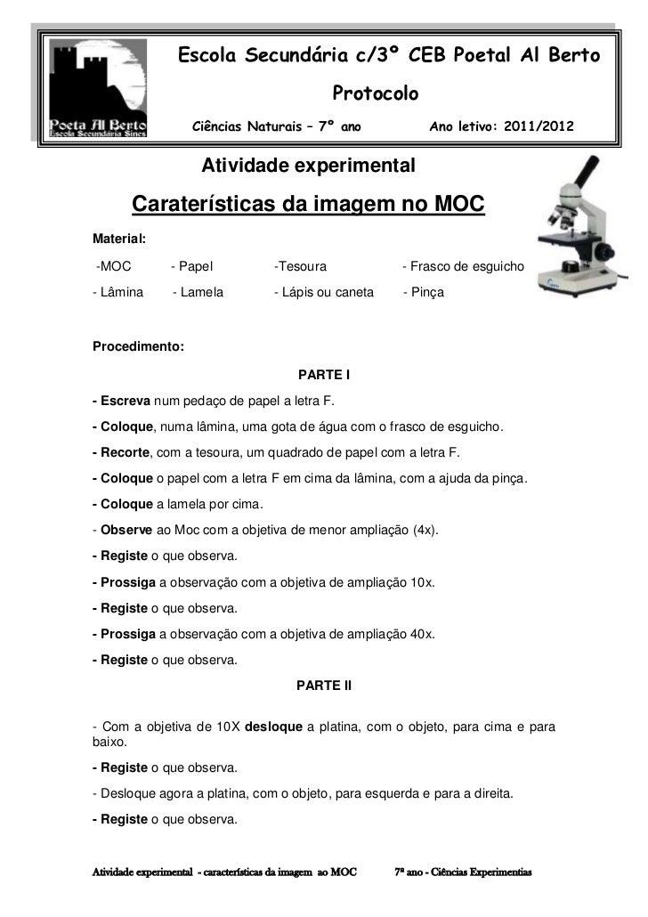 Escola Secundária c/3º CEB Poetal Al Berto                                                   Protocolo                    ...