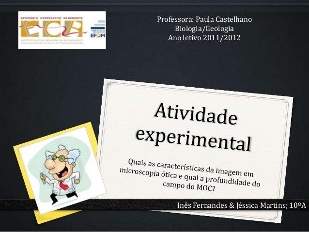 Professora: Paula Castelhano     Biologia/Geologia   Ano letivo 2011/2012      Inês Fernandes & Jéssica Martins; 10ºA