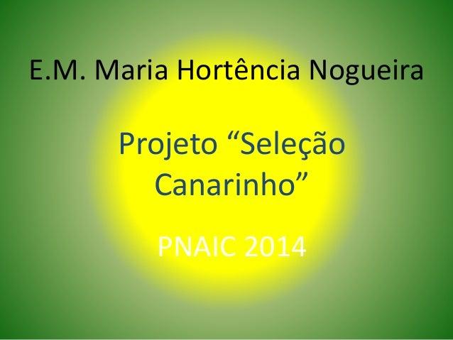 """E.M. Maria Hortência Nogueira Projeto """"Seleção Canarinho"""" PNAIC 2014"""