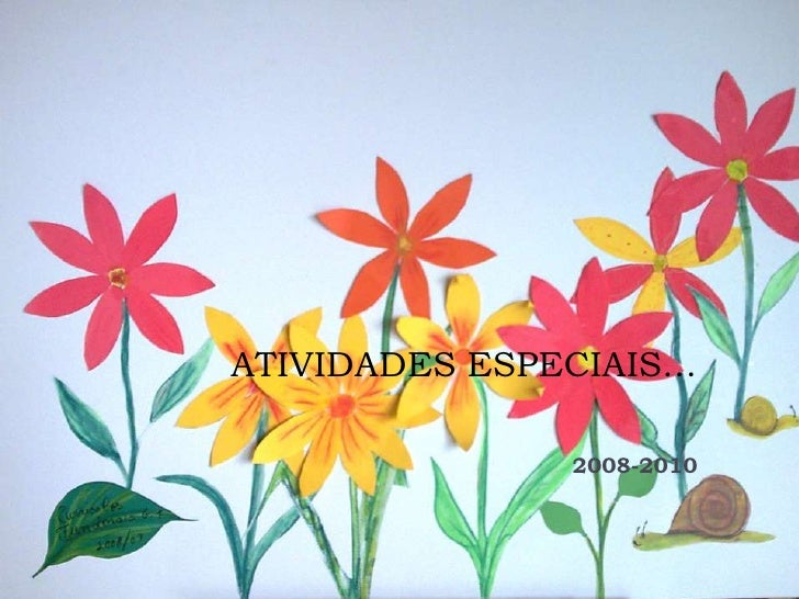 ATIVIDADES ESPECIAIS…               2008-2010