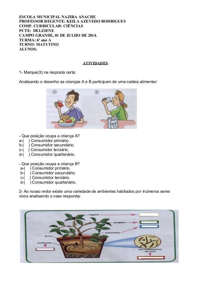 ESCOLA MUNICIPAL NAZIRA ANACHE PROFESSOR REGENTE: KEILA AZEVEDO RODRIGUES COMP. CURRICULAR: CIÊNCIAS PCTE: DELZIENE CAMPO ...