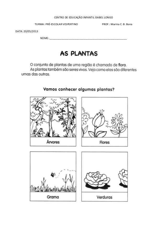 Atividades Tema Vegetais