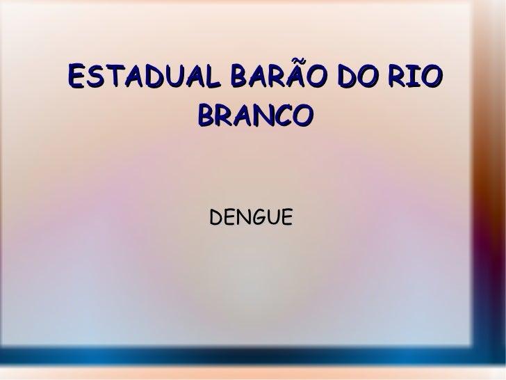 ESTADUAL BARÃO DO RIO BRANCO DENGUE