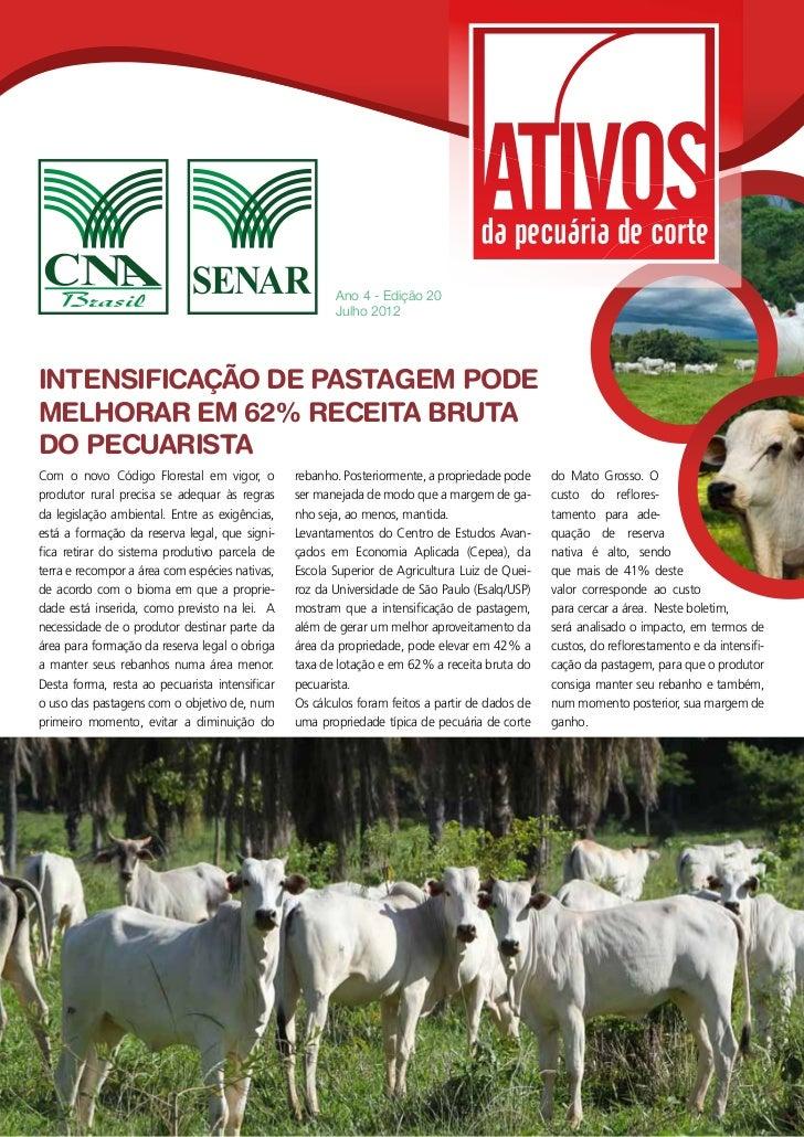 Ano 4 - Edição 20                                                       Julho 2012INTENSIFICAÇÃO DE PASTAGEM PODEMELHORAR ...