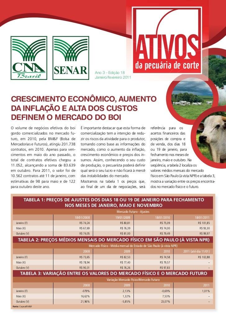 Ano 3 - Edição 18                                                     Janeiro/fevereiro 2011CRESCIMENTO ECONÔMICO, AUMENTO...