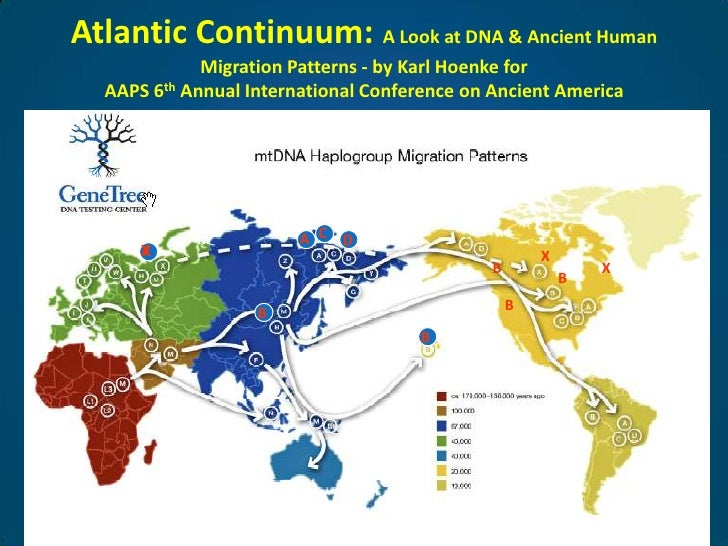 Atlantic Continuum:A Look at DNA & Ancient Human Migration Patterns - by Karl Hoenke for AAPS 6th Annual International Con...