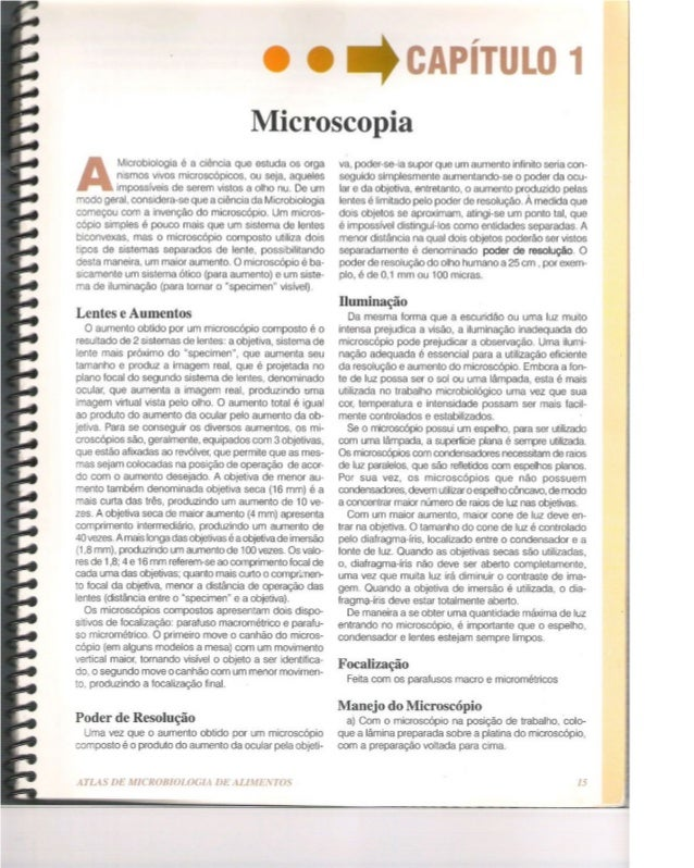 Atlas de microbiologia de alimentos pdf