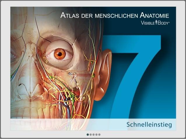 Atlas der menschlichen Anatomie für PC/Mac