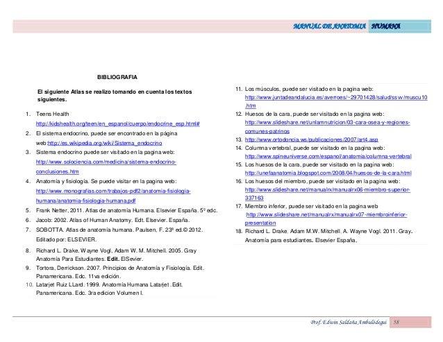 Famoso Sitios Web De Anatomía Para Estudiantes Festooning - Anatomía ...