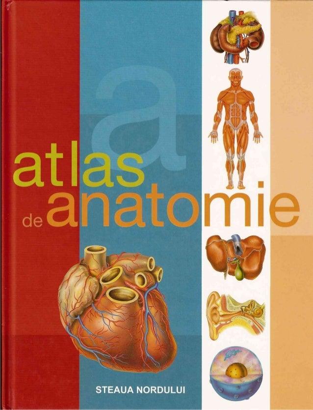 Atlas de anatomie ilustrat