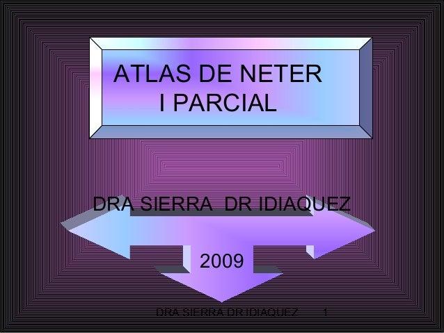 ATLAS DE NETER I PARCIAL  DRA SIERRA DR IDIAQUEZ 2009 DRA SIERRA DR IDIAQUEZ  1