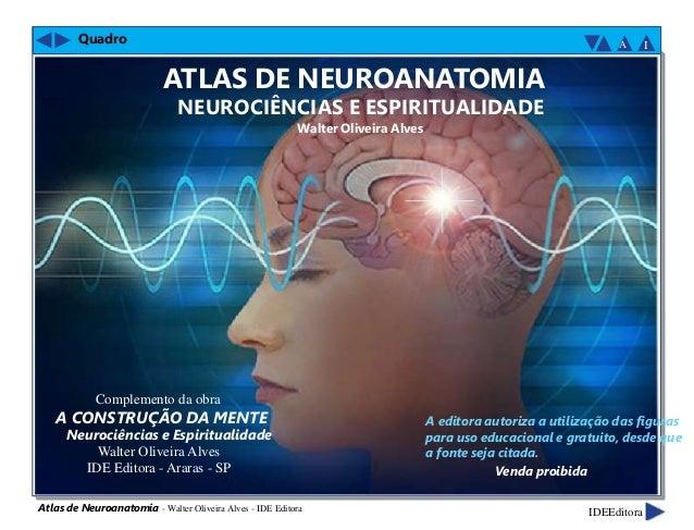 Quadro Complemento da obra A CONSTRUÇÃO DA MENTE Neurociências e Espiritualidade Walter Oliveira Alves IDE Editora - Arara...