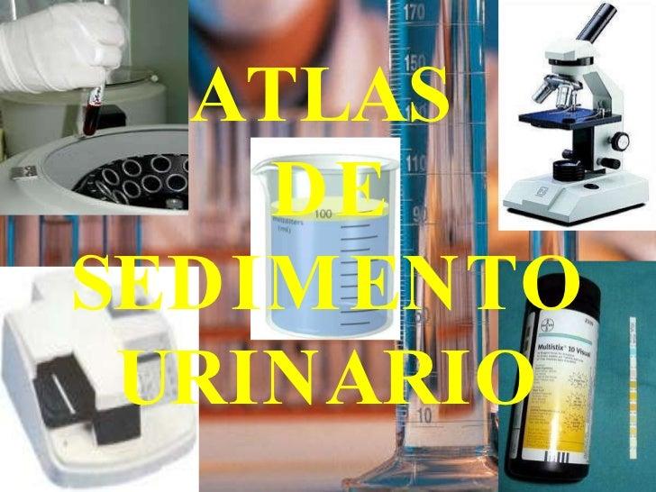 ATLAS  DE SEDIMENTO URINARIO