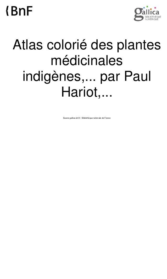 Atlas colorié des plantes médicinales indigènes,... par Paul Hariot,... Source gallica.bnf.fr / Bibliothèque nationale de ...