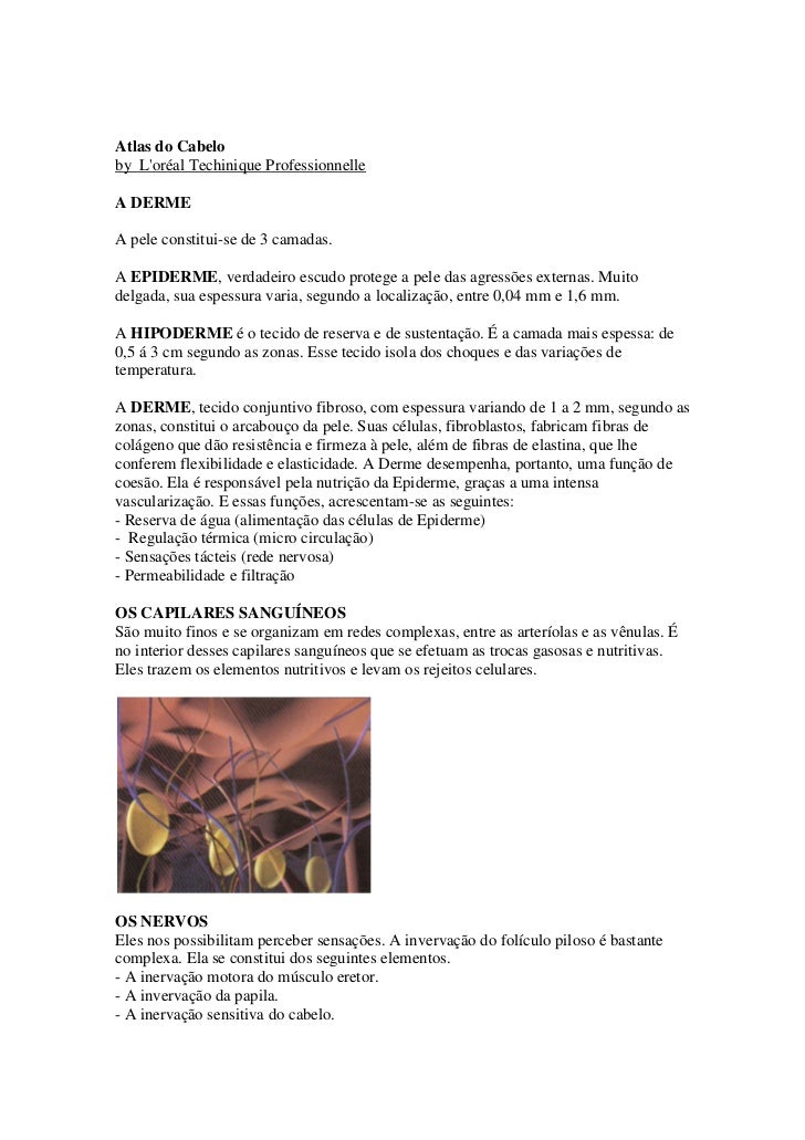 Atlas do Cabelo by L'oréal Techinique Professionnelle  A DERME  A pele constitui-se de 3 camadas.  A EPIDERME, verdadeiro ...
