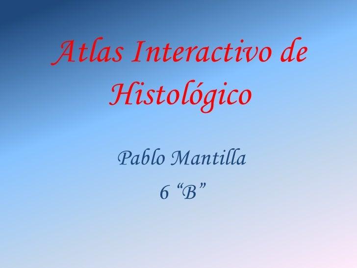"""Atlas Interactivo de Histológico<br />Pablo Mantilla<br />6 """"B""""<br />"""
