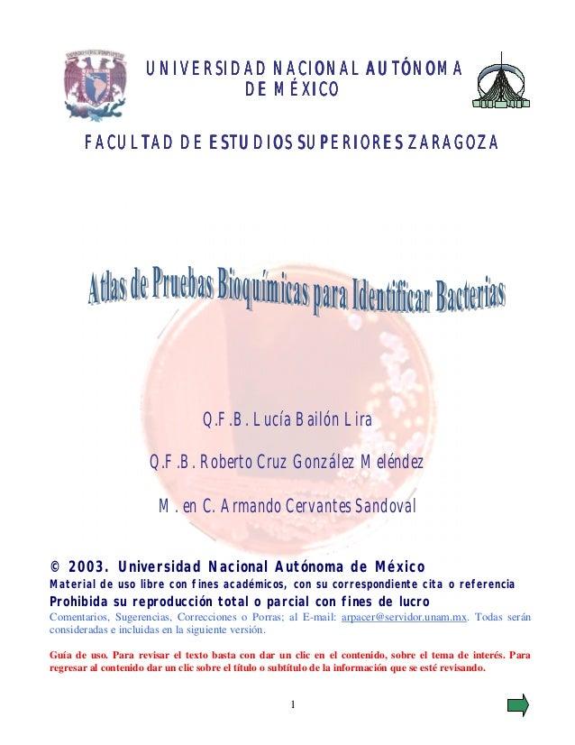 UNIVERSIDAD NACIONAL AUTÓNOMA                             DE MÉXICO       FACULTAD DE ESTUDIOS SUPERIORES ZARAGOZA        ...