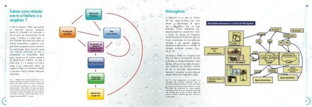 ATLAS•daQualidadedeÁguadoReservatóriodaPampulhaATLAS•daQualidadedeÁguadoReservatóriodaPampulha2524NitrogênioO nitrogênio é...
