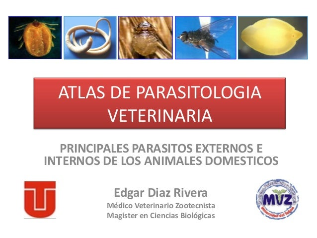 ATLAS DE PARASITOLOGIA       VETERINARIA   PRINCIPALES PARASITOS EXTERNOS EINTERNOS DE LOS ANIMALES DOMESTICOS           E...