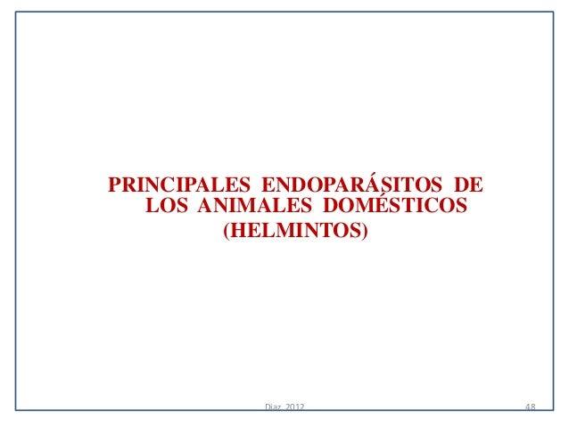 PRINCIPALES ENDOPARÁSITOS DE   LOS ANIMALES DOMÉSTICOS         (HELMINTOS)           Diaz, 2012          48
